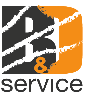 bd service carrelli elevatori Cantone Ticino